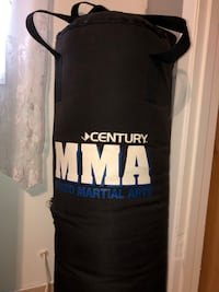 Century MMA punching bag