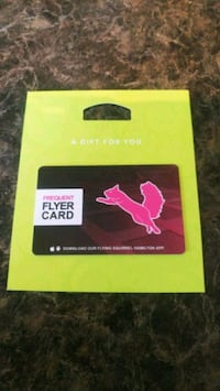 Flying squirrel gift certificates Hamilton