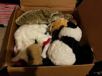 Big Box of stuffed animals  Clarksville, 37042
