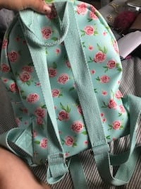 Teal book bag with red roses  Dagsboro, 19939