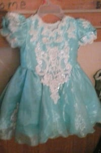 blue and white floral Elsa dress costume