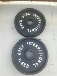 pair of 25LB weight plates