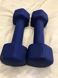 pair of blue fix weight dumbbells
