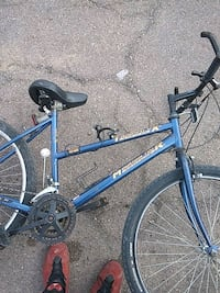 blue and black hard tail mountain bike Apache Junction, 85119