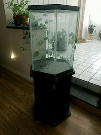 Hexagon fish tank and stand