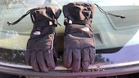 pair of black The North Face gloves Williamsburg, 23188