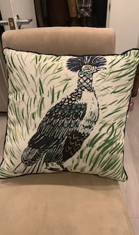 Two target Peacock Pillows. Indoor or outdoor Washington, 20003