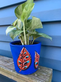 Hand Painted Plant Pot