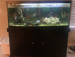 75 gallon aquarium with everything showing included.