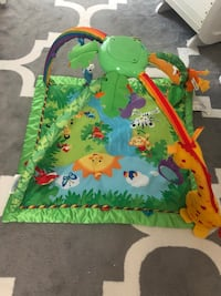 baby's green and multicolored activity gym Dearborn, 48128
