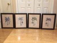 Large Framed and Matted Botanical Palm Tree Prints Markham, L3T 3L4