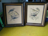 two paintings of assorted birds with brown wooden frames Wichita, 67203