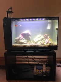 Saltwater Aquarium with stand 13.5 gallons comes with everything needed Toronto, M9B 1L6