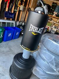 Youth Everlast Standing Boxing Bag & Gloves