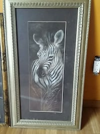 Zebra picture with frame Melbourne, 32935