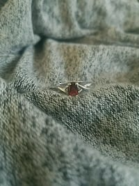 Silver ring Charter Township of Clinton, 48038