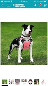 Dog Harness for large dogs( new) 格伦伯尼, 21061