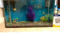 blue and red fish tank 2286 mi