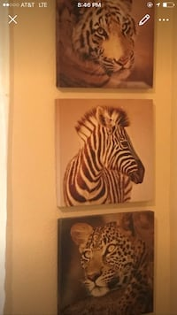 two brown and white zebra print wall decors Roseville, 95747