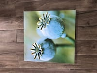 Soothing Zen Canvas Wall Art Mississauga, L5E 2N3
