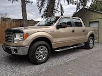 Ford-F-150-2011 MANHEIM