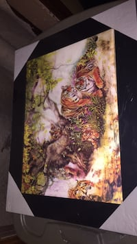3D pictures—medium size (15 Inches by 19 inches Brighton, K0K