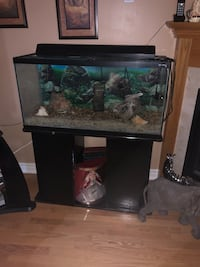 Fish tank with stand Mississauga, L5G
