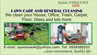 Cleaning Capitol Heights, 20743