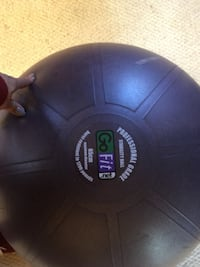 Purple  Professional Grade Go Fit Stability Ball.  Chicago, 60617