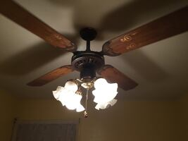 Great condition ceiling fan