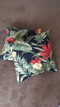 2 throw pillows. reversable Indianapolis, 46219