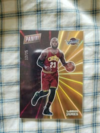 Panini Cleveland Cavaliers LeBron James collectible card Caledon, L7E 1J6
