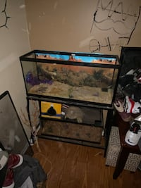 Aquarium with stand and lid