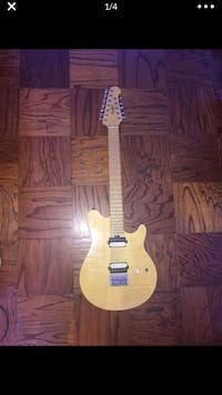 12 string electric guitar