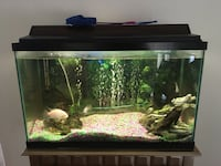 black framed clear glass fish tank Windsor, N9A 5K7