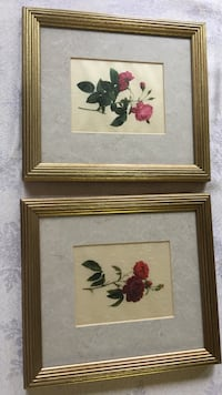 Two floral framed wall art