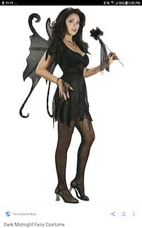 Dark Fairy Costume  Edmonton, T5H 0R1