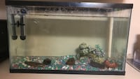 black-framed and clear glass fish tank