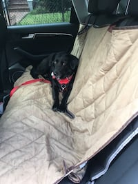 Dog car seat cover Alexandria, 22314