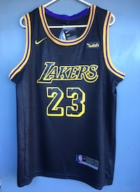 Lakers Lebron James Jersey  Los Angeles, 91405