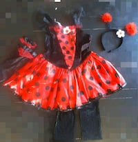 lady bug costume Langley, V3A 8H9