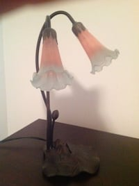 Blue and pink frosted glass floral lamp. Toronto