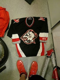 Authentic Buffalo Sabres Jersy CCM NHL