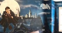 ***CUSTOM WALL HAND PAINTED WALL MURALS*** Richmond Hill
