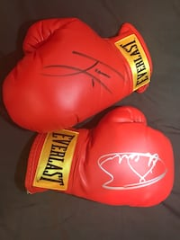 Autograph boxing gloves by CANELO AND CHAVES JR