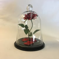 Beauty and the beast enchanted rose 2268 mi