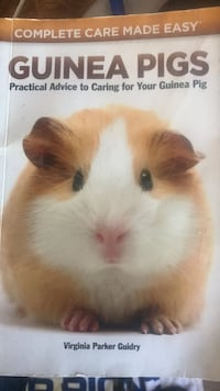 GUINEA PIGS CARE : Free book MANY FREE BOOKS . If you are interested  [TL_HIDDEN]  Joey  DRYWALLPLUSSTS text me.
