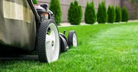 Affordable Lawn Maintenance and Care in Milton Milton