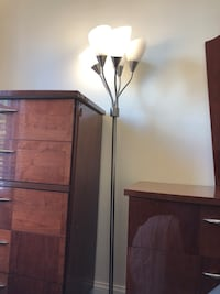 Floor Lamp w/ 5 movable lights Alexandria, 22304