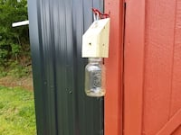 Carpenter bee traps Knoxville, 37918
